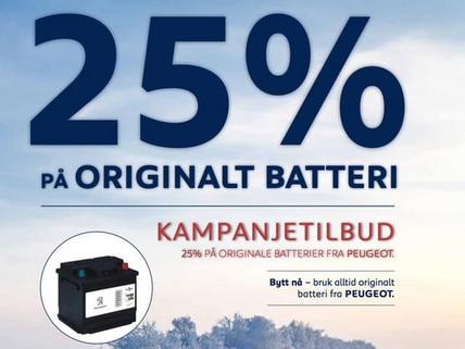 Banner - kampanje batteri