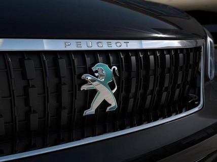 /image/91/5/peugeot-e-traveller-business-mit-elektromotor-front-mit-peugeot-logo.686915.jpg